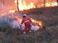 Risorse finanziarie antincendio boschivo