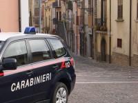 Topi d'appartamento messi in fuga dai Carabinieri.