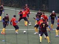 Il Benevento, alla ricerca di un attaccante esterno, ma deve prima sfoltire la rosa. iL BENEVENTO