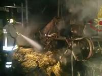 Tocco Caudio: incendio di un capannone agricolo.