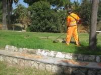 Cervinara. La Green Service s.c.s. si aggiudica appalto manutenzione verde pubblico