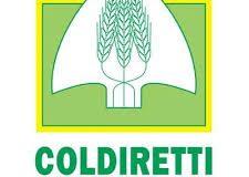 Domani Coldiretti Campania celebra la Giornata del Ringraziamento.