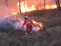 Servizio Antincendio: Passariello citerà in giudizio la Partenio Vallo Lauro.