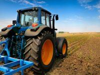 """""""Sviluppo locale: opportunità da ricercare in agricoltura"""""""