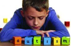 Campania: E.Russo,governo impugna legge regionale su autismo