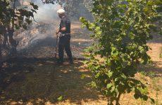 Polizia Municipale spegne incendio a Contrada Macchia