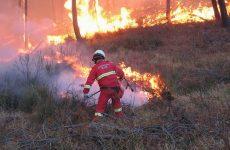 Prevenzione incendi, Petracca: utile la legge regionale sul fuoco prescritto.