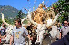 Sagre: carri di Grano Foglianise dedicati a zone terremotate