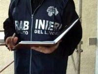 Carabinieri in azione sui luoghi di lavoro: denunce e sanzioni.