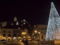 Montesarchio. Angela e Rosanna Papa: maestosità dell'albero di Natale non riesce a distrarre i cittadini dai problemi..
