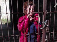 Rotondi. La protesta di Giovanna Coscia contro atti teppistici alla sua proprietà.