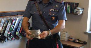 """Studente """"pusher"""" beccato dai carabinieri. Funziona dispositivo """"Scuole Sicure""""."""