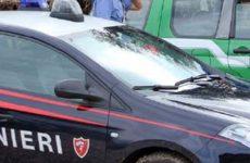 Carabinieri Forestali in azione sui luoghi di lavoro: denunciato imprenditore.