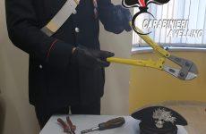 Accordo di vicinato, i carabinieri sventano un furto.