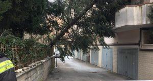 Vento e neve, super lavoro per i Vigili del Fuoco di Avellino.