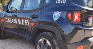 Cervinara. Controlli dei Carabinieri-Forestale: una macelleria aveva la bilancia priva del marchio CE.