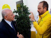 """PSR bloccato, Masiello a De Luca: """"Il tempo delle promesse è scaduto"""""""